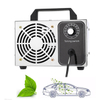Fast Express Delivery Ozone Generator 10g 20g Small Portable Air Purifier Ozone Generator Machine For Sale