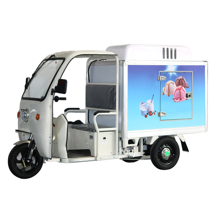 Electric Refrigerator Freezer Cargo Food Van
